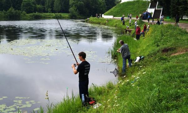 прогноз на клев рыбы в острове псковской